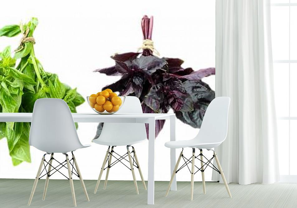 Fototapety do kuchni zioła